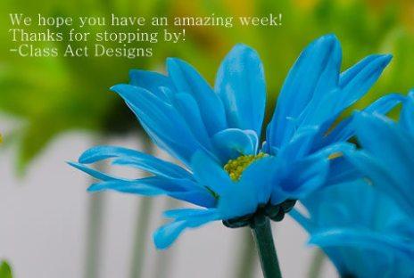 blue-flowers2