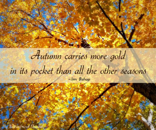 Autumn-carries-more-gold.-Beautiful-fall-quotes-including-this-one-compiled-by-My-Nearest-and-Dearest-blog.